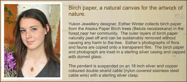 Birch paper jewellery, a natural canvas for the artwork of nature. Yukon Jewellery designer, Esther Winter, collects birch paper from the Alaska Paper Birch trees (Betula neoalaskana) in the forest near her community. The outer layers of birch paper naturally peel off and can be sustainably removed without causing any harm to the tree. Esther's photographs of flora and fauna are copied onto a transparent film. The birch paper and photograph are inset in a sterling silver casing and capped with domed glass. The necklace pendant is suspended on an 18 inch silver and copper coloured double strand cable (nylon covered stainless steel cable wire) with a sterling silver clasp.